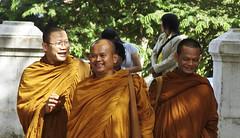 Happy monktime
