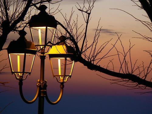 Albero E Lampione