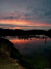 Park Sunset 1 (xstex) Tags: park uk sunset england sky lake nature liverpool river landscape pond unitedkingdom britain great stephen 2008 robinson crosby merseyside stephenrobinson stephenrobinsonphotography xstex