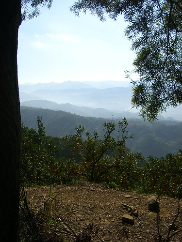 Adjoining Mountain Ranges as seen from Fei Feng Mountain Hiking Trail
