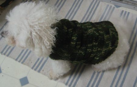 Ravelry Camo Dog Jacket Pattern By Cheryl Mason