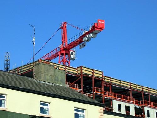 Wolff Crane