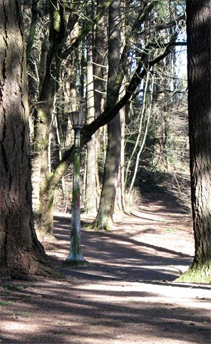 path up mount tabor with a streetlamp