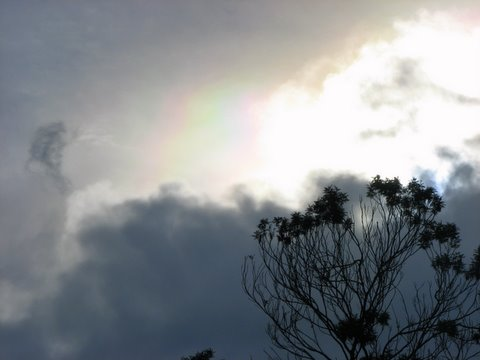 almost a rainbow....kodai golf course 240508