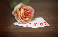 L O V 3 (KissThePixel) Tags: love cards hearts heart rose pink stilllife stilllifephotography valentine macro 50mm nikon nikondf sigma sigmaart sigmaf14 depthoffield flower flowers