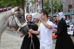 DSC_0602  Kaylie van de Saardijk (Ton van der Weerden) Tags: horses horse de cheval zeeland nederlands 2009 belges internationale draft chevaux belgisch trait ijzendijke trekpaard zugpferd trekpaarden trekpaardenkeuring ijzendijk