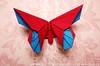 June's Butterfly