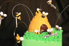 """Spelling bee cake • <a style=""""font-size:0.8em;"""" href=""""http://www.flickr.com/photos/60584691@N02/5705316408/"""" target=""""_blank"""">View on Flickr</a>"""