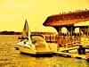 A yellow day :) (Gaby Valay) Tags: california usa yellow agua gaby sandiego amarillo pajaros tejado yate valay flickrstars flickrhearts gabyvalay amazingshots tornadoaward shining★star