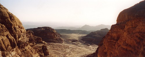 The Amazing Sinai Desert