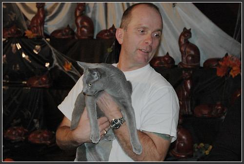 Cat show in Antwerpen 1788882439_26613eb673