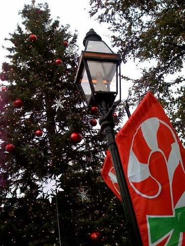 Sundance Square Christmas Tree, Fort Worth