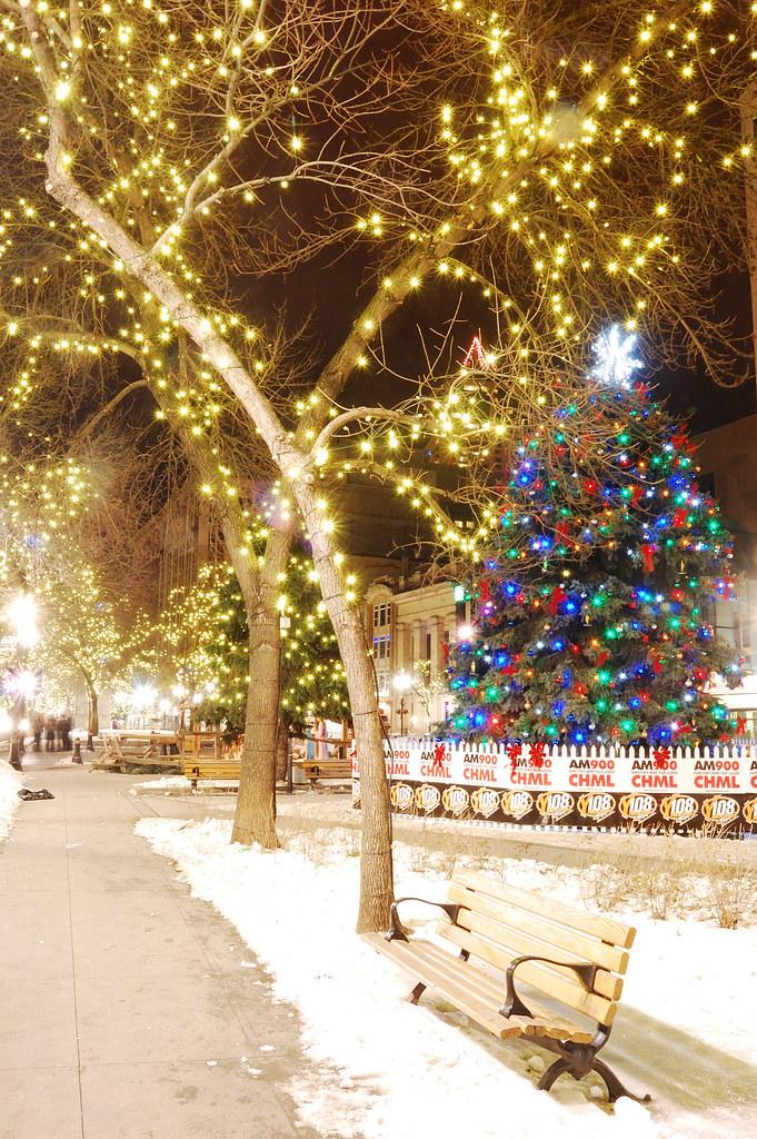 Merry Christmas Hikari To Kage Tags Light Tree Night Nikon Downtown Hamilton