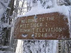 Tiger 1 summit