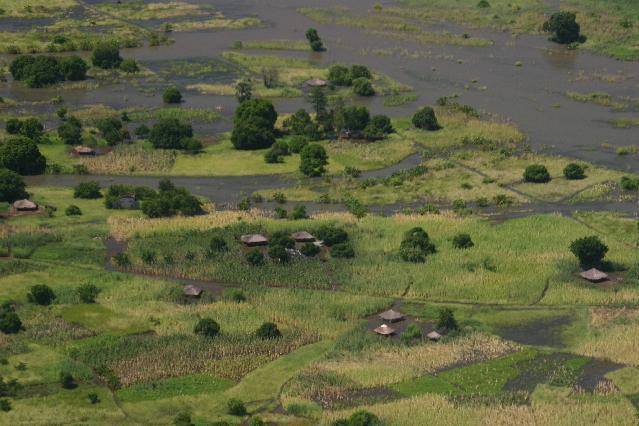 zambezi 6