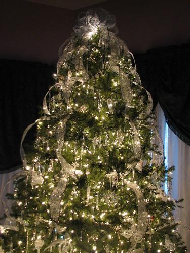 """glass"" tree"