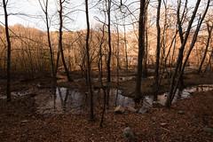 Santa Fe del Montseny (Hachimaki123) Tags: santafe santafedelmontseny montseny parcnaturaldelmontseny paisaje landscape bosque bosc wood forest