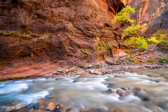 Zion National Park Autumn Colors & Winter Snow Fine Art Photography 45EPIC Dr. Elliot McGucken Fine Art Landscape and Nature Photography: Sony A7RII! (45SURF Hero's Odyssey Mythology Landscapes & Godde) Tags: zion national park autumn colors winter snow fine art photography 45epic dr elliot mcgucken landscape nature sony a7rii epic np narrows virgin river