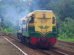CC201 & Old BB201 Locomotives passing Notog Station (chris railway) Tags: station train indonesia tren eisenbahn railway zug locomotive purwokerto bahn ka spoor maos treinen ferrocarril ferrovia gleis treni spoorweg makina  ferroviaria   chemindefer  pocig       lokomotywa cilacap   demiryolu banyumas keretaapi  trainphotography  ngst oldpainted   kroya tuho  doubletraksi    traksi oto notog   umayxela sidulich  eisenbahnzgen   kolejowych ferrovipathe ferrovira fotografiaferrovira