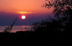 Sunset of Pars  :  خورشيد پارس (Ehsan Lotus) Tags: sunset iran pars ایران غروب جنوب پارس خورشید استانبوشهر bushehrprovince shirinoo southpars پارسجنوبی شیرینو خورشیدپارس