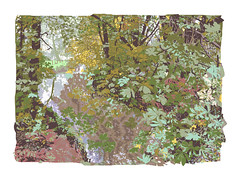 Waterstock (artwork October 2007) (Martin Beek) Tags: autumn art leaves illustration digital artwork drawing digitalart drawings adobe portfolio studies artworks avantgarden digitalmedia waterstock printsanddrawings martinbeek digitalillustrations graphicworks drawingsandprints martinbeekprintsanddrawings oxfordartweeks2008 oxfordcentralartweeks southoxfordcoimmunitycentre martinbeek gardensandart artandsculptureinpublicspaces garedensanddetails photographyandpainting artweeksoxfordshire thecameraandtheartist theinfluenceofphotography martinbeekdrawingsandprints thedrawingsofmartinbeek martinbeeksprintsanddrawings drawingsandgraphicwork martinbeekdrawings drawingswatercoloursandprints