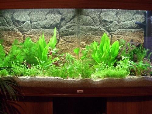 Pumpe Heizstab Aquarium 200 Ltr Usw Einfach Zu Schmieren Komplett Mit Unterschrank Filter