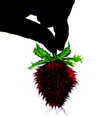 across the strawberry