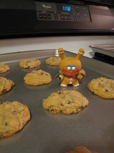 Baking with Dunny