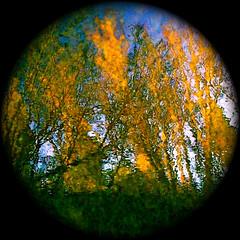 "The World of My Wild River…!!! (Denis Collette...!!!) Tags: world canada reflection bravo quebec reflet monde univers firstquality brillianteyejewel ""deniscollette"" «wildriver» «rivièresauvage» world100f «wearetheworld» «michaëljackson»"