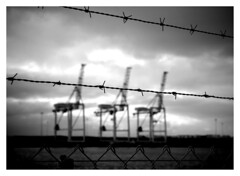 Freedom (Travis NZ) Tags: bw cloud water evening is dock wire crane border l pp tauranga 400d 24105mmlis