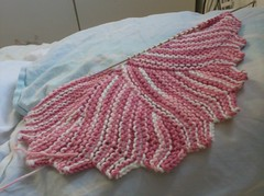 dishcloth2 008 (crochet-along) Tags: knitting craft yarn dishcloth cotton