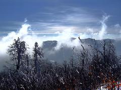 AO0702044 (gezilerden) Tags: snow fog sis kar kartepe altnolukyaylas
