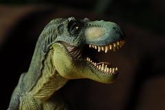 DE.2008-03-15.jpg (DigitalTribes) Tags: macro green toy interestingness dino dinosaur teeth 2008 dt digitaltribes interestingness349 markoneil i500