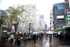 Shibuya @ Daytime (~Morgan) Tags: japan tokyo rainyday shibuya pluie daytime japon journe ©morgancugerone 200803301543252388
