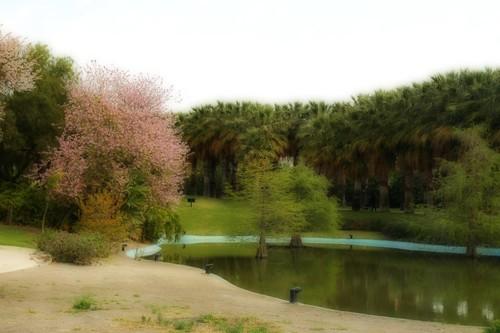 Parque Orton