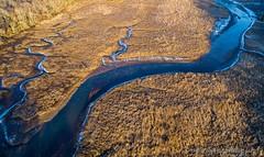 River (Darren LoPrinzi) Tags: dji drone p4p aerial creek river water curve assiscunkcreek burlington nj newjersey nature landscape overhead phantom4pro phantom4proplus blue yellow contrast light sun goldenhour