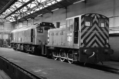 Class 03 03189 25033 Birkenhead Mollington St 30/7/83 (Stapleton Road) Tags: train liverpool diesel birkenhead shutter depot locomotive class03 class25 mollingtonst