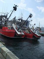 boats on boats