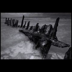 ribs of the wreckage (Misteriddles) Tags: beach decay alien shipwreck queensland soe caloundra ssdicky dicky 50v5f welltaken dickybeach