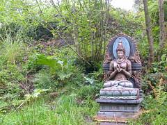 Prajnaparamita late summer