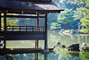 The Golden Pavillion in Kyoto, Japan (kteneyck) Tags: bridge lake water japan garden japanese golden pond rocks lantern pavillion favoritegarden top20tranquil