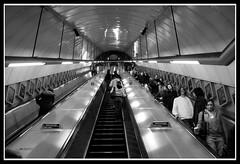 The tube (Cesare Viganò) Tags: blackandwhite bw canon photograph 5d viga londra metropolitana bianconero thetube prospettiva itsmylife cesarevigano cesareviganò