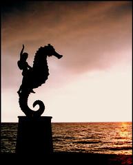 Pobre hipocampo, se cree un potro y es un pescado! (Mariano77) Tags: sunset sea sky sun sol clouds mexico atardecer mar seahorse jose wave escultura cielo nubes reflejo malecon puertovallarta mariano olas ocaso fortuny caballitodemar hipocampo