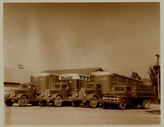 Rausch trucks (light reading) Tags: 1940s 1950s trucking cherokeeiowa