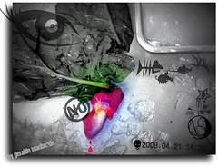 Manipulao de imagem com fto de corao de galinha (Geraldo Maribondo) Tags: de galinha corao