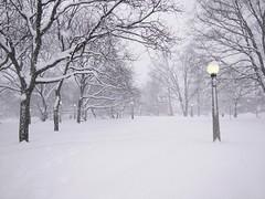 Dundonald Snow