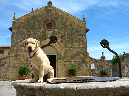 Roger on Monteriggioni well
