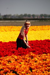 in a sea of tulips... (llus) Tags: holland netherlands girl tulips nederland streetphotography tulipfield keukenhof humaninterest streetportraits lisse tulipfields urbanportraits retratosurbanos retratocallejero fotografacallejera retratoscallejeros girltulips