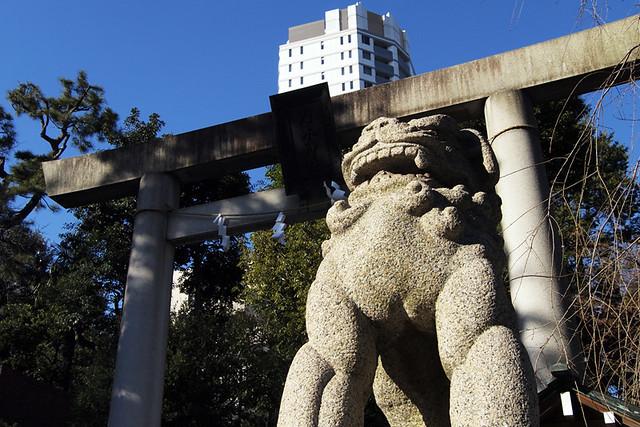 110108_135700_乃木神社