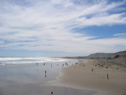 Muriwai, on a busy day